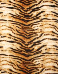 Tiger and Strip Pattern Winter Scarf